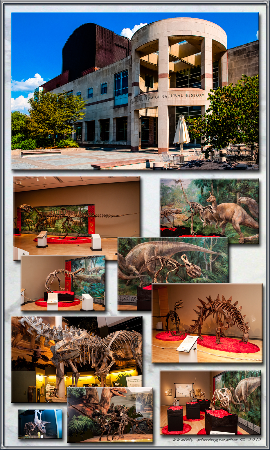 INCLUDES IMAGES FROM THE 'CHINASAURUS' EXHIBIT
